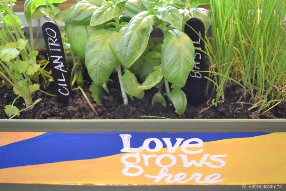 Customized Kitchen Counter Herb Garden